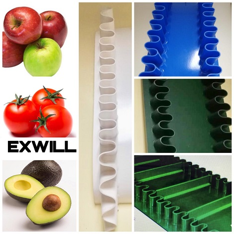 exwill collage